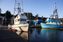 fiska för ankarfartyg Arkivbild
