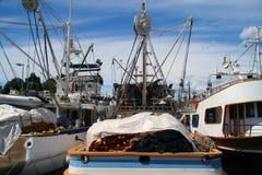 fiska för fartyg Arkivbilder