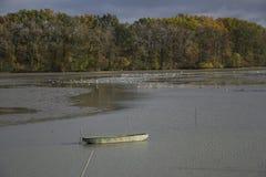 Fiska fartyg på sjön med höstträdbakgrund Royaltyfri Bild