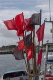 Fiska flaggor Arkivfoton