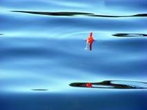 fiska floatstång Arkivbilder