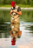 fiska fluga royaltyfri fotografi