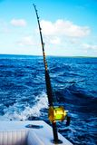 Fiska från en yacht i havet royaltyfri bild