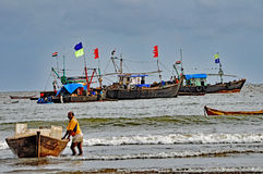 fiska hamn royaltyfri foto