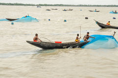 Fiska i Bangladesh Arkivbilder