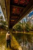 Fiska i The Creek Arkivfoton