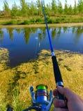 Fiska i dammet Fotografering för Bildbyråer
