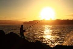 Fiska i fjärden Fotografering för Bildbyråer