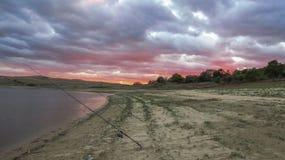 Fiska i nedgången av den Jrebchevo fördämningen nära staden Panicherevo lökformig Arkivfoton