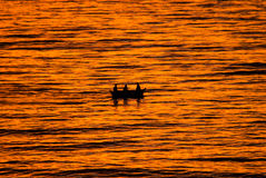 Fiska i solnedgången Arkivfoton
