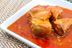Fiska i tomatsås på maträtten - på burk fisk Royaltyfri Foto