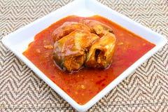 Fiska i tomatsås på maträtten - på burk fisk Royaltyfria Foton