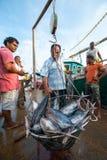 Fiska marknaden i Mirissa Royaltyfri Foto