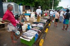 Fiska marknaden i Mirissa Arkivbild