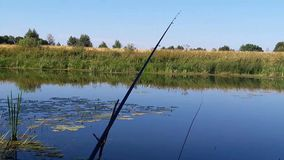 Fiska med ljuden av naturen arkivfilmer
