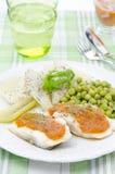 Fisk med tomatsås och grönsaklodlinje arkivfoto