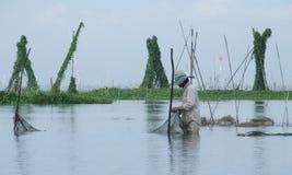Fiska på Danau (sjön) Tempe i Sulawesi Arkivbild