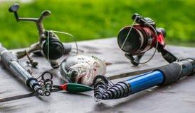 Fiska på floden arkivbild