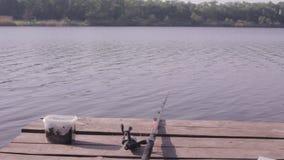 Fiska på laken stock video