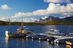 Fiska på Lofoten Royaltyfri Foto