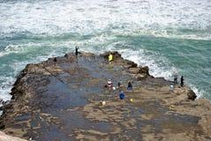 Fiska på muriwaien Royaltyfri Fotografi