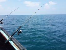 fiska på se Fotografering för Bildbyråer