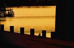 Fiska på solnedgången Royaltyfri Fotografi