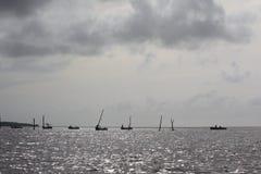 Fiska på Suriname River arkivbild