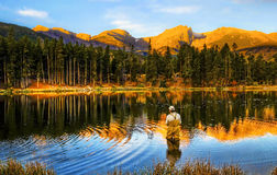 Fiska på soluppgång, i Colorado berg Arkivbilder