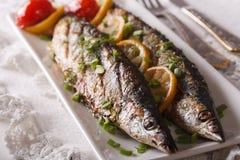Fiska saury som grillas med citronen och gräslökar på en plattanärbild Ho royaltyfria foton