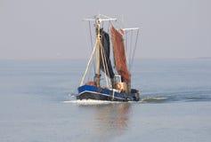 fiska ship arkivbild