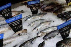 fiska white På prislapparna i ryss är den nya fisken skriftlig Inga logoer och märken Arkivbild