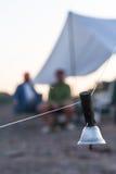 Fiskalerter som är klar för operation Karpfiske Royaltyfria Foton