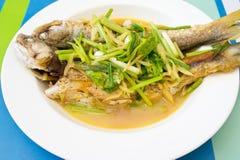 fiskar den ljust rödbrun mackerelen ångade två Royaltyfria Foton