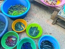 fiskar den nya marknaden Arkivbild