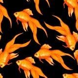 Fiskar den sömlösa modellen för vattenfärgen med guld i svart vatten fotografering för bildbyråer
