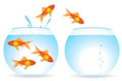 fiskar flyttning royaltyfri illustrationer