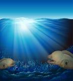 Fiskar i hav Arkivbild