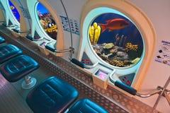 Fiskar i ubåtfönster Arkivfoton