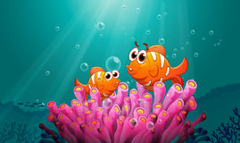 Fiskar i vatten vektor illustrationer