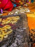 fiskar och skaldjur Royaltyfria Foton