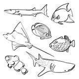 Fiskar samlingen Royaltyfri Bild