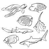 Fiskar samlingen Royaltyfria Bilder