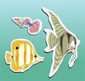 fiskar stikers Arkivbilder