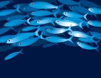fiskar stimet Royaltyfri Foto