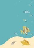 fiskar tropiskt under vatten Royaltyfri Fotografi