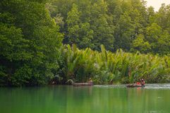 Fiskare är livsstilen i floden Royaltyfri Fotografi