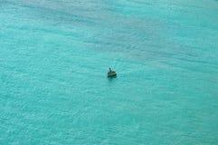 Fiskare bara på havet arkivbilder