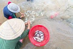 Fiskare gör illavarslande fisknät för arbete royaltyfria bilder