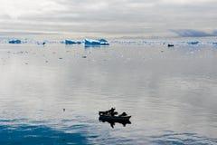 Fiskare Icebergs, Grönland Arkivbild